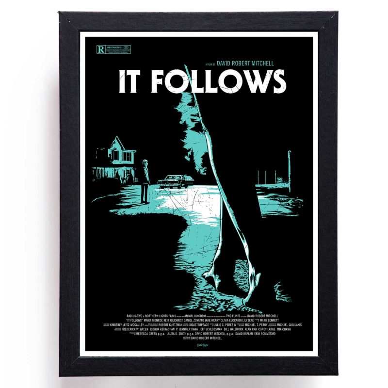 it follows cuadro coleccionable